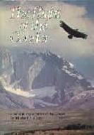 .The_Flight_Of_The_Condor.