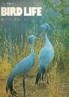 .Bird_Life.