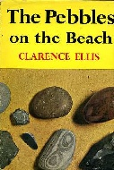 .Pebbles_on_the_Beach.