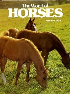 .The_World_of_Horses.