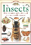 .Eyewitness_Explorers:_Insects.