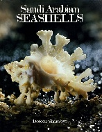 .Saudi_Arabian_Seashells_(Selected_Red_Sea_And_Arabian_Gulf_Molluscs).