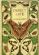 .Insect_life.