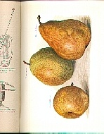.The_Fruit_Grower's_Guide._Vol_1.