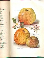 .The_Fruit_Grower's_Guide-Vol_2.